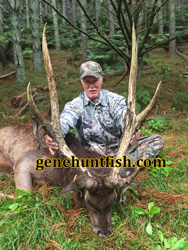 John Teeter and His Rusa Stag