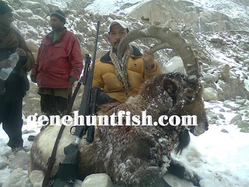 Ali Anwar Hunting in Pakistan