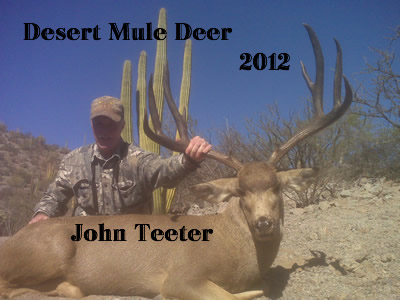 John and His Desert Mule Deer