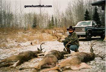 Geno And Some Great Bucks