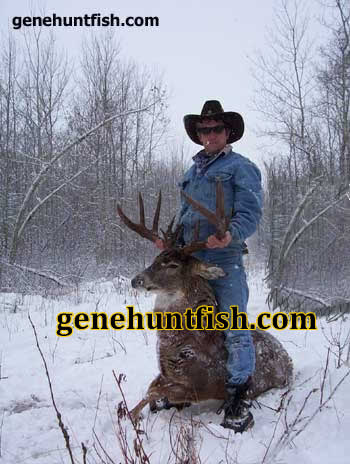 geno and Book Whitetail buck