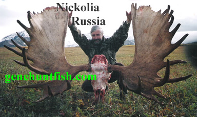 Nickolia and Russian Moose