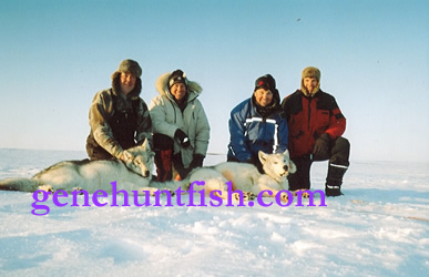 Hunters In The High Arctic Out Hunting