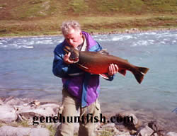 Fisherman and Arctic    Char